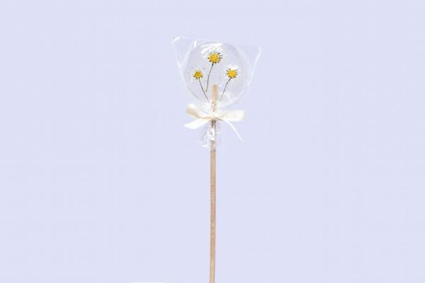 Blumen-Lollys
